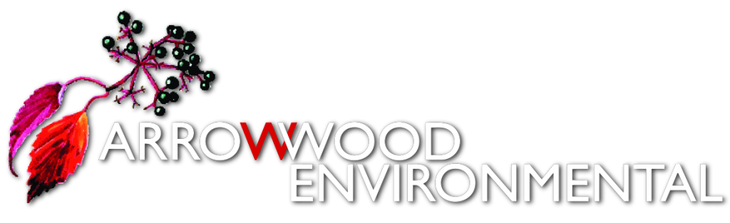 ArrowwoodLogo_stacked4_72dpi