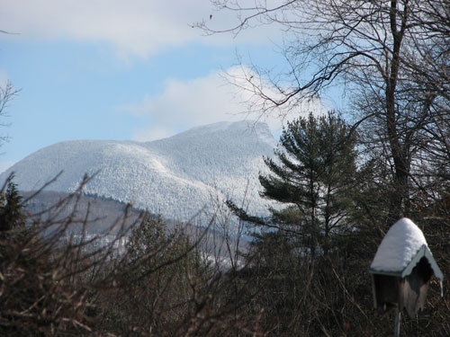 Camel's Hump: view from the Birds of Vermont Museum's backyard