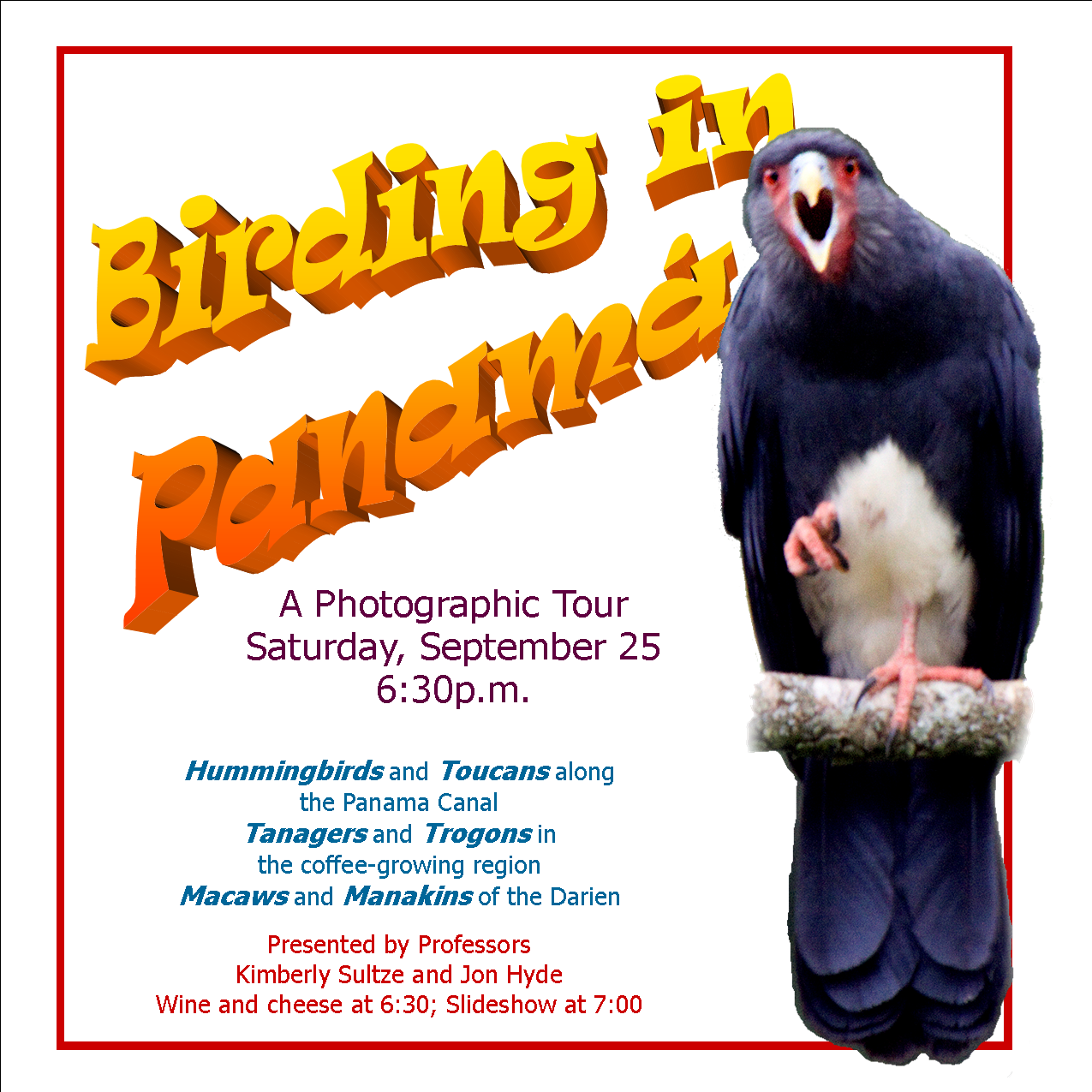 Birding in Panama and the Darien (Flyer)