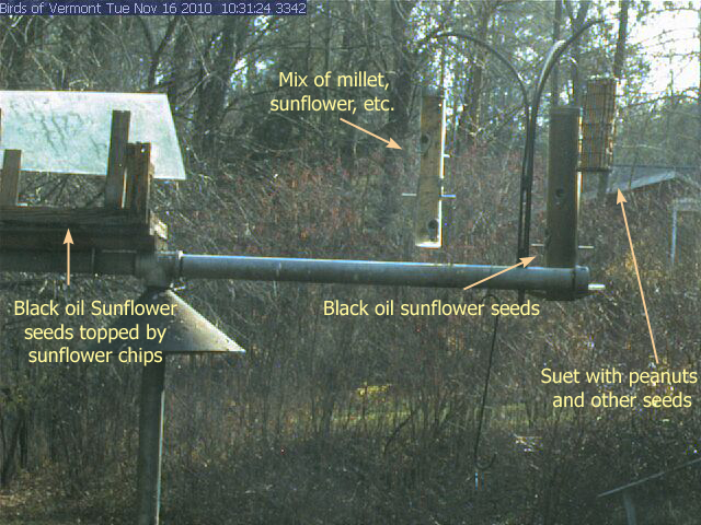Four Feeders (visible with web cam), food types labelled