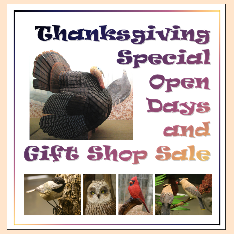 Thanksgiving Special Open Days & Sale at the Birds of Vermont Museum