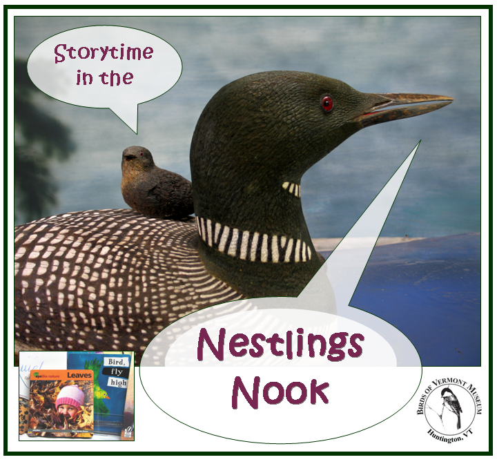 Storytime in the Nestlings Nook at the Birds of Vermont Museum