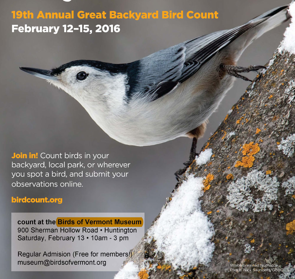 Share the Great Backyward Bird Count with friends, family, and the Birds of Vermont Museum