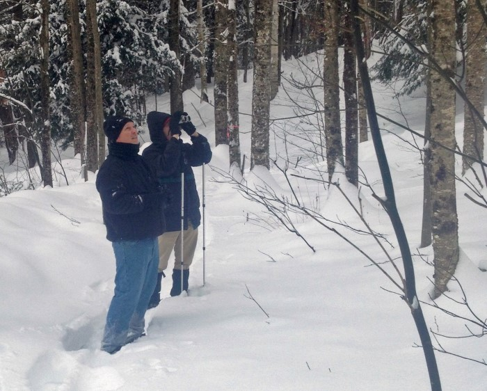 Birders on a winter monitoring waslk