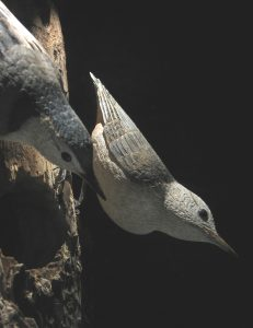 White-breasted Nuthatches (carved by Bob Spear)