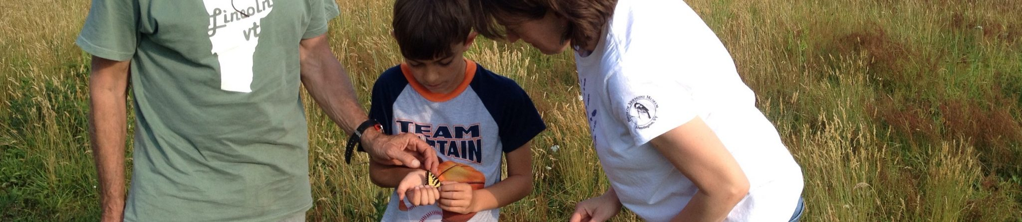Child holding swallowtail butterfly (pollinator) with two adults looking on.