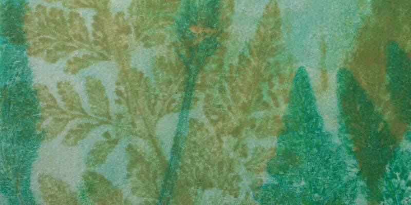 Nature Printing by COleen O'Connell