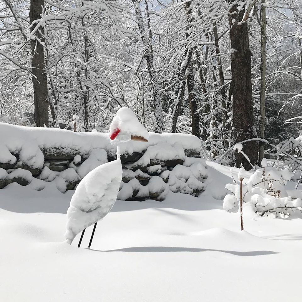 Snow-covered wooden bird in the Museum's rain garden