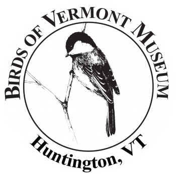 """Black-capped Chickadee (ink drawing by Adelaide Tyrol for the Birds of Vermont Museum) surrounded by the words """"Birds of Vermont Museum Huntington, VT"""""""